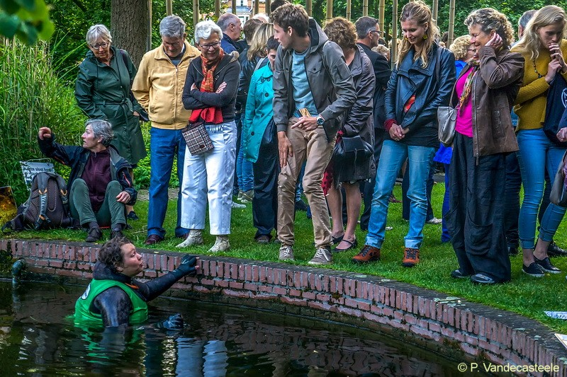 jun2016 midzomernachtfeest hortusleiden