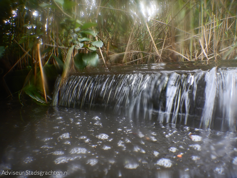 sep2020 heemtuin waterval